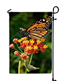 *GARDEN FLAG SIZE: 12X18 inches,Suitable for all standard size garden flagpoles. *DOUBLE SIDED FLAG: You can display them from all angles of the road,unlike other cheaper single-sided settings. *HIHGER QUALITY: Made of high-quality polyester fabric a...