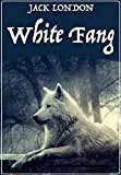 White Fang Novel by Jack London:(Illustrated Edition) (English Edition)