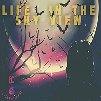 Life in the Sky View