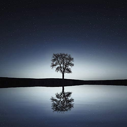 Music for Reading, Schlaflieder Für Kinder, Asian Zen Meditation