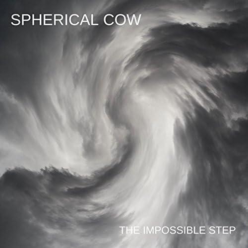 Spherical Cow