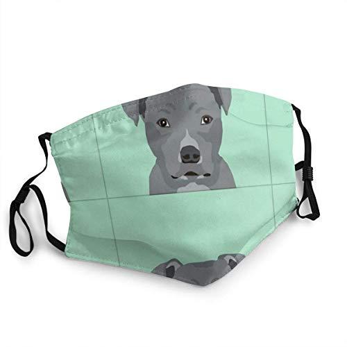 air kong Pitbull graues Hundekissen mit geschnittenen Linien Mundschutz Mundschutz mit Staub Wiederverwendbarer Schutz Mundschutz Mit austauschbaren Filtern