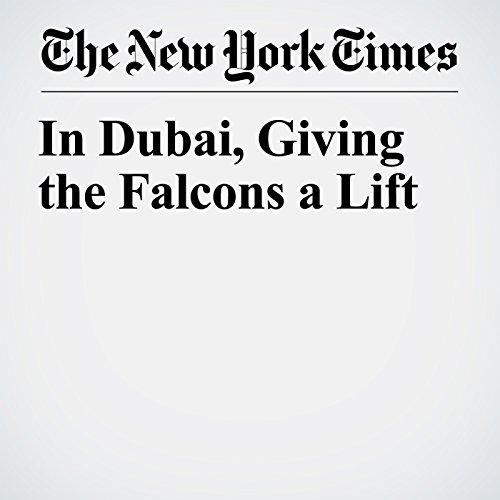 In Dubai, Giving the Falcons a Lift copertina