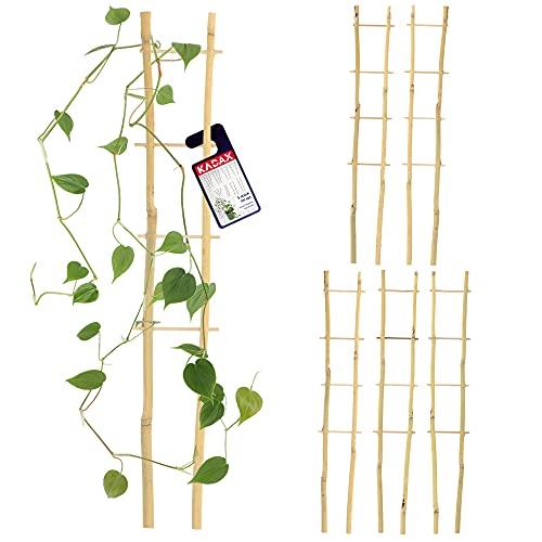 KADAX Bambusleiter, 5er Set, Stützleiter für Blumen, Garten-Pflanzenstütze aus Bambusholz, Blumengitter, Rankhilfe, Gitterspalier V-Form, Kletterhilfe (H:38cm, doppelt)