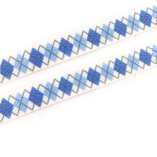 Les Trésors De Lily [K8375-2 paires de lacets 'Caméléon' bleu