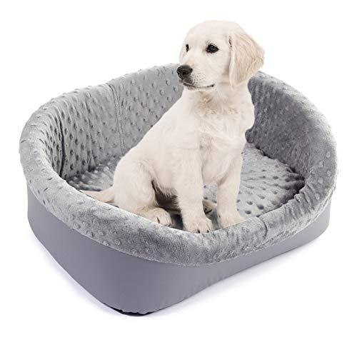 BoutiqueZOO Hundebett Hundesofa Hundekissen für kleine/mittlere/große Hunde