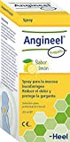 Angineel Própolis Solución Para Pulverización Bucal Suaviza La Irritación Y El Dolor Gracias A La Acción Protectora De La Mucosa Bucofaríngea. 60 g