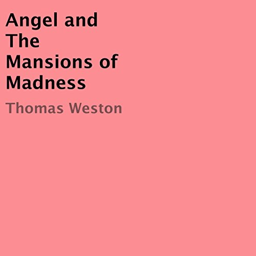 Angel and the Mansions of Madness audiobook cover art