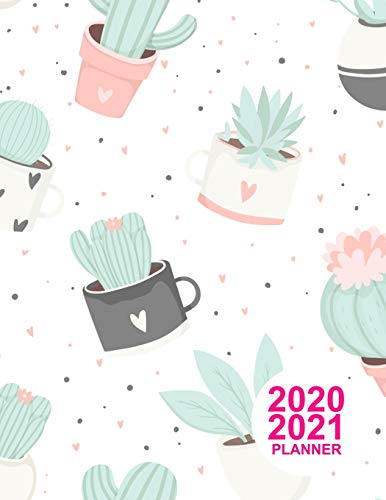 2020 2021 Planner: Nifty Daily, Weekly and Monthly Planner 2 Years Agenda Schedule Organizer Logbook and Personal Journal Diary 24 Months Calendar Two Year Appointment Book Product Code BR 000023