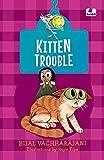Kitten Trouble (Hook Books) (English Edition)
