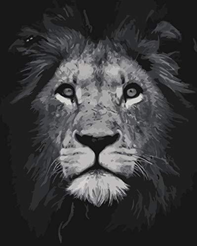 Kits de pintura por números, DIY pintura al óleo Dibujo lienzo colorido con pinceles decoración decoración 1 cabeza de león negro