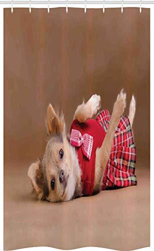ABAKUHAUS Chihuahua Douchegordijn, Puppy dat Kilt Photo, voor Douchecabine Stoffen Badkamer Decoratie Set met Ophangringen, 120 x 180 cm, Pale Chocolate Vermilion