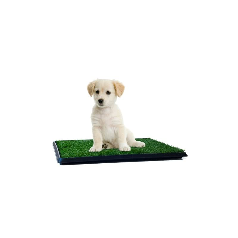 dog supplies online artificial grass puppy pad for dogs and small pets – portable training pad with tray – dog housebreaking supplies by petmaker