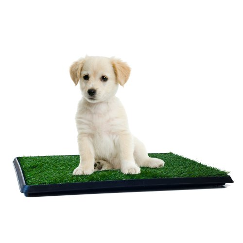 Artificial Grass Puppy Pad for Dogs and Small Pets – Portable Training Pad with Tray – Dog Housebreaking Supplies by PETMAKER