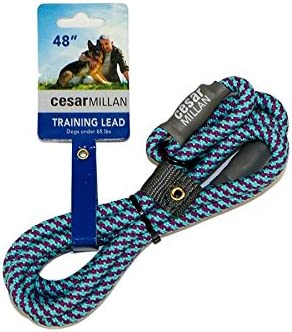 Cesar Millan Slip Lead Leash Dog Leash in Training Leash Regular Aqua Purple product image