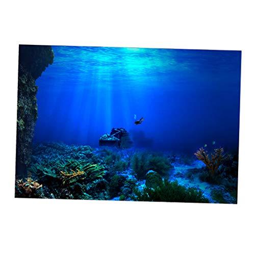 B Blesiya Aquarium Hintergrund Poster - Marine, 61x30cm