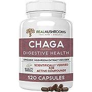 Chaga Extract Mushroom Supplement 120 Caps, 500 mg Vegan & Non-GMO Chaga Mushroom Powder Capsules, Antioxidant & Immune System Booster, Chaga Sclerotium Mushroom Extract No Fillers, 60 Day Supply