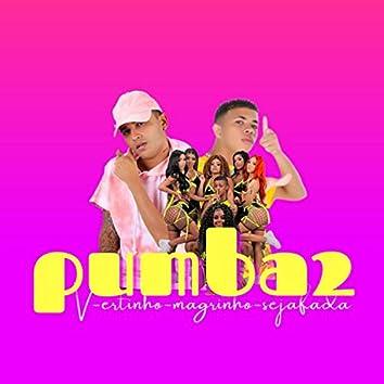 Pumba 2 (feat. Seja Fada & Mc Magrinho) (Brega Funk)
