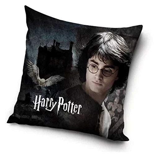 Harry Potter Housse de Coussin 40 x 40cm Visage
