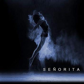 Señorita - Piano Cover