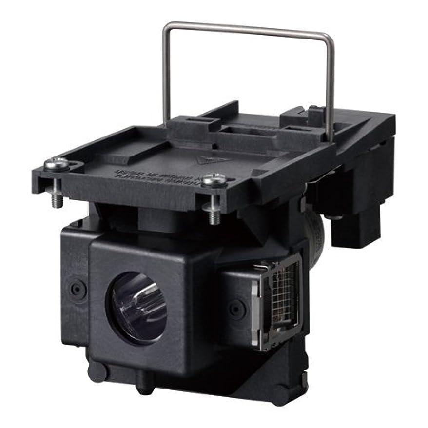 宿命ヤングほこりリコー RICOH PJ 交換用ランプ タイプ17 512822