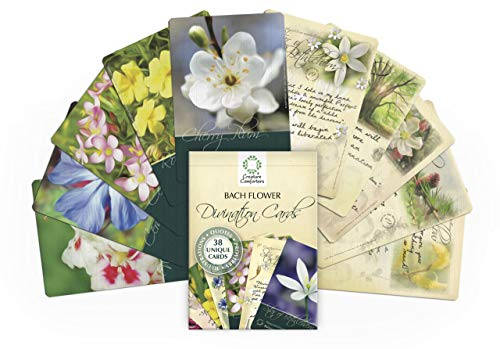 Bach Flower Divination Cards Pack 38 Beautiful Illustrations, Proverbs, Quotes, Affirmations
