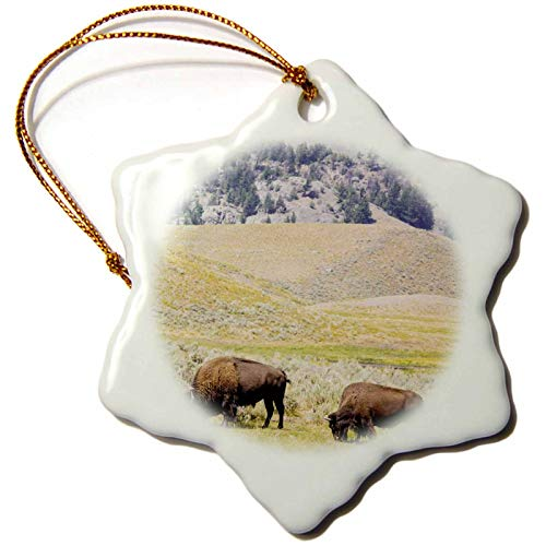 3dRose USA, Wyoming, Yellowstone NP. Two Buffalos in Grassy Field. - Ornaments (ORN_333170_1)
