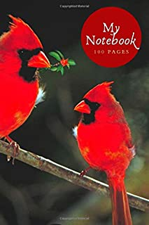 My Notebook - cute bird-themed notebook cover design: A stunning 100-page (6x9 inch) lined notebook for busy people/bird w...