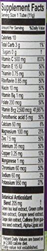 Zipfizz Grape Healthy Energy Drink Mix - Transform Your Water Into a Healthy Energy Drink - 30 Grape Tubes …