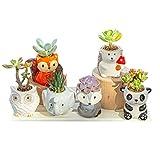 6 Pack Succulent Pots with Drainage Animal Ceramic Succulent Planters Pots 3 Inch,Small Flower Pot for Mini Succulent Plants Live,Succulent Decor,Cute Succulent Gift Ideas,Garden Succulent Kit