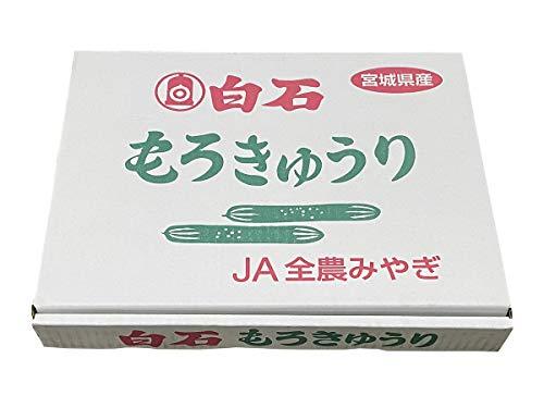 宮城県産 もろきゅうり 10パック入(箱)