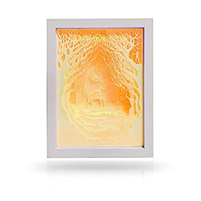 DIY Papercut Light Boxes, Night Light Lamp of Creative Light Paintings,Remote Control Function for Adults and Kids,Baby Nursery Bedroom Living Room
