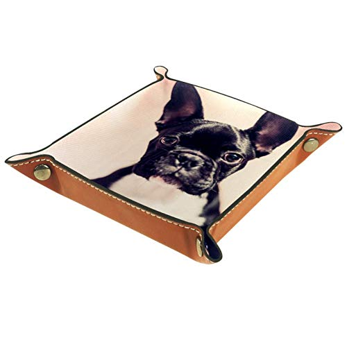 Mapotofux Women Girls Leather Square Dish Trinket Plate Jewelry Tray for Mothers Day Birthday Gift,Cute French Bulldog