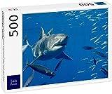 Lais Puzzle Buceo en Jaula con el Gran tiburón Blanco en la Isla Guadalupe, México 500 Piezas