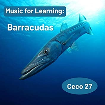 Music for Learning: Barracudas