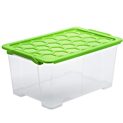 Rotho Evo Safe Keeping Aufbewahrungsbox 44l mit Deckel, Kunststoff (lebensmittelecht) BPA-frei, transparent/grün, 44l (59,0 x 39,5 x 28,0 cm)