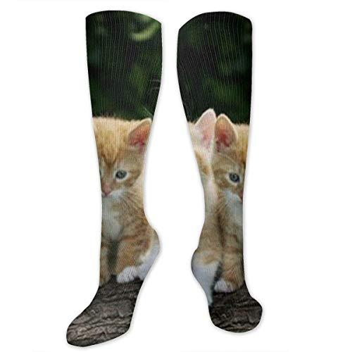 Nifdhkw Cute Kitten and Purple Flowers Art Print Compression Socks for Women & Men - Best Medical, Nursing, Travel & Flight Socks