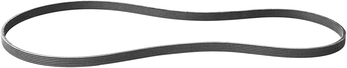 Volvo 30731808, Serpentine Belt