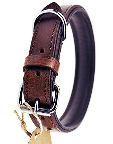 Schnüffelfreunde Hundehalsband aus Leder (M - 28-36cm, Braun)