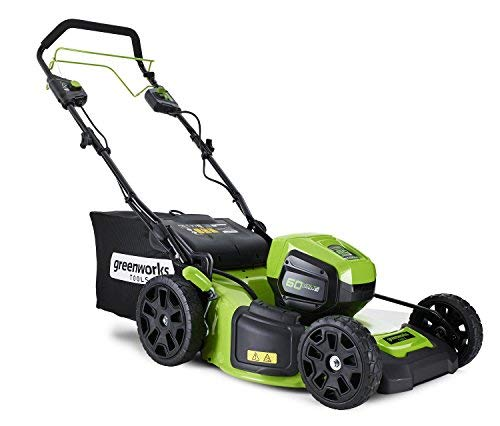 Greenworks Tools Tondeuse à gazon autotractée sans fil 46cm 60V Lithium-ion avec 2 batteries 2Ah...