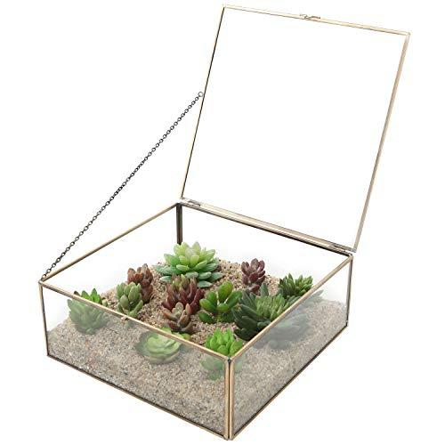 Con hebillas Vintage y vidrio transparente caja decorativa/terrario pantalla/organizador de joyería w/Tapa con iluminación