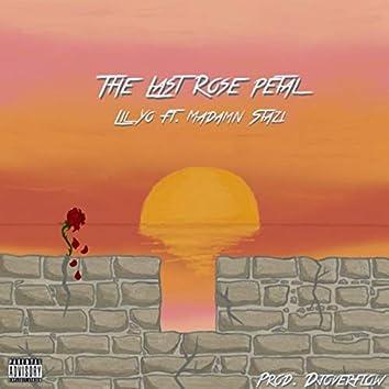 The Last Rose Petal (feat. Madamn Stazi)