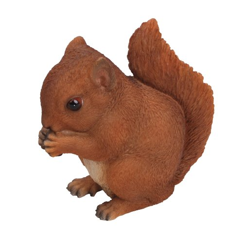 Red Squirrel Baby Real Life Ornament by Vivid Arts