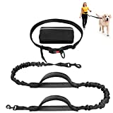 Earth Friendly Hands Free Dog Leash with Zipper Pouch Adjustable Waist Belt Shock Absorbing Padded Handles and Reflective Bungee Dog Leash for Small to Large Dogs Running Walking Training Hiking