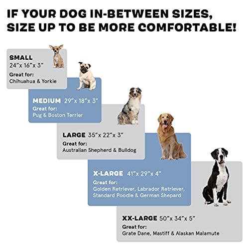 Product Image 3: Barkbox Memory Foam Platform Dog Bed