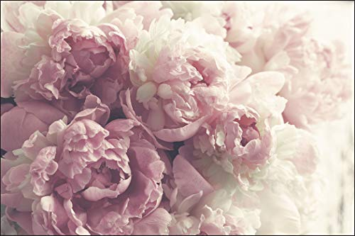 Muralo Papel pintado fotográfico flores 240 x 360 cm Papel pintado de fieltro Papel pintado de pared pared Peonías Sala...