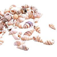 Josopa 巻き貝 海ビーチ 自然巻き貝 水族館飾り 水槽装飾 生息地装飾用品 水族館造園装飾 キャンドル作り DIYクラフト 100セット