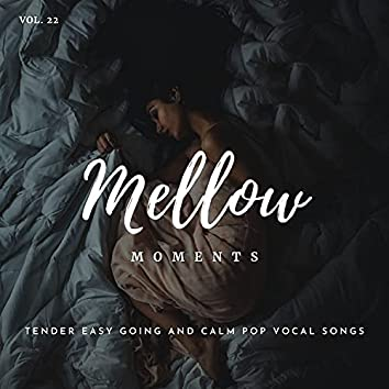 Mellow Moments - Tender Easy Going And Calm Pop Vocal Songs, Vol. 22
