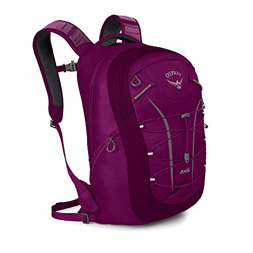 Osprey Axis 18 Unisex Everyday & Commute Pack - Eggplant Purple (O/S)