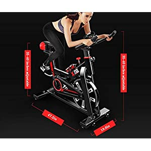LIDAK Magnetic Exercise Bikes Stationary Belt Drive Indoor Cycling Bike with High Weight Capacity Adjustable Magnetic Resistance w/LCD Monitor